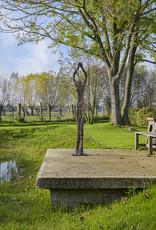 ANN VRIELINCK CLOUD CATCHING - BRONZEN BEELD