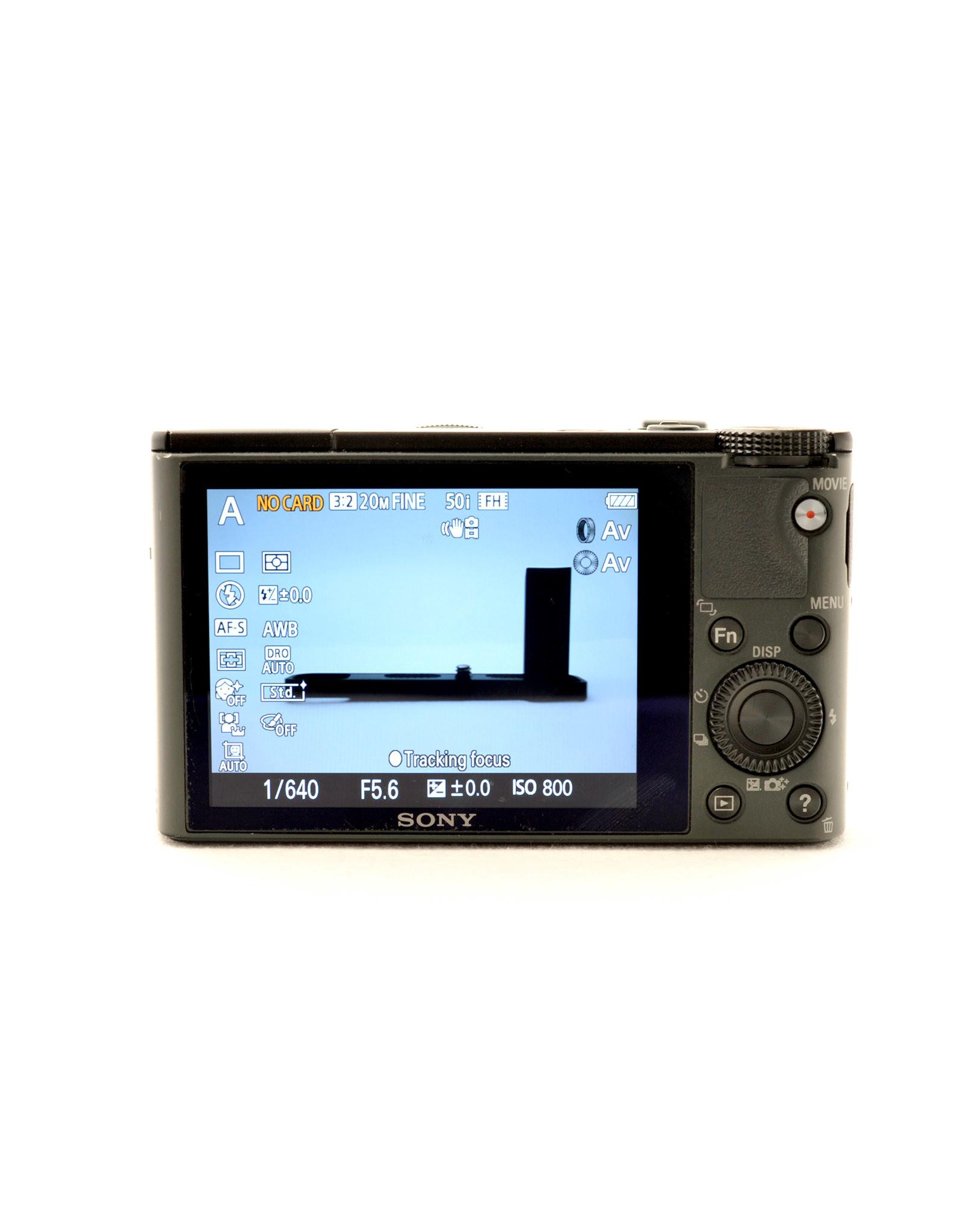 Sony Sony RX100   AP1071906
