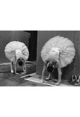 Colin Jones Swans Warming Up, English National Ballet, Hong Kong. Colin Jones (14)