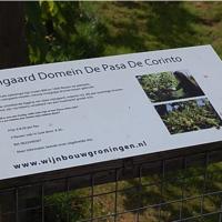 Domein de Pasa de Corinto in Glimmen Groningen