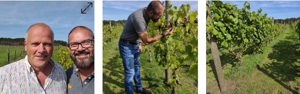 Samen met Henk van Meekeren de wijngaard inspecteren