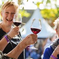 Heerlijk Nederlandse wijn proeven tijdens de wijnfeesten in Groesbeek