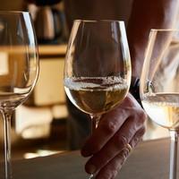 Zijn Chardonnay en Sauvignon de meest populaire druiven voor witte wijn?