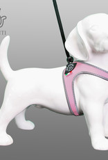 Tre Ponti Liberta tuig voor kleinere honden en katten