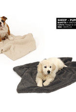 51 Degrees North sheep puppy blanket
