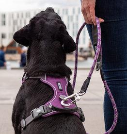 Dog Copenhagen Comfort walk pro harnas - Vernieuwd model