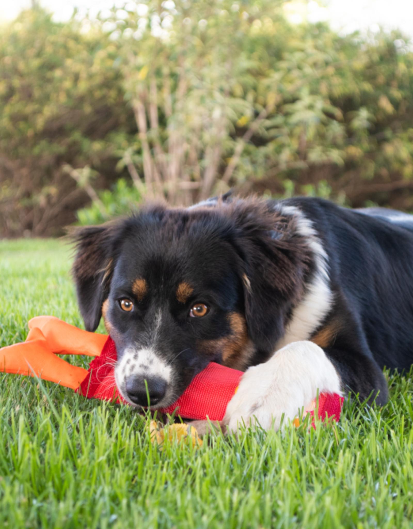 Hozies Nelly Niles  Medium dog toy