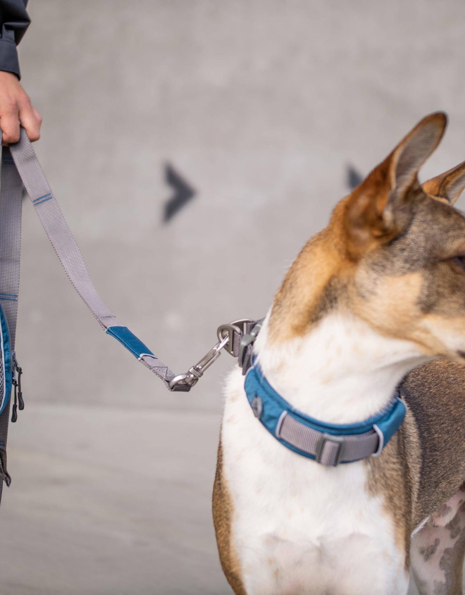 Dog Copenhagen Urban trail leiband