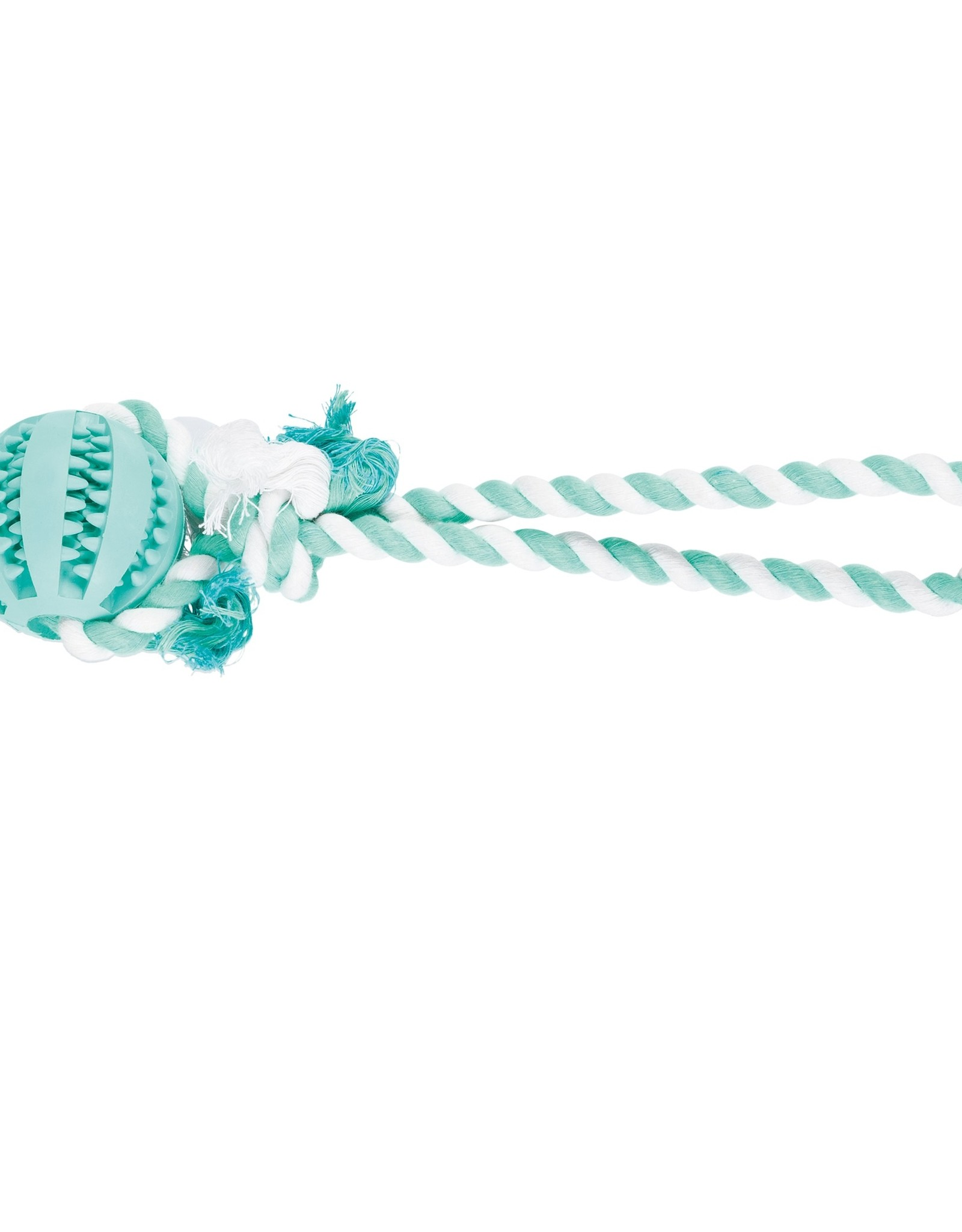 Trixie Denta Fun bal aan touw muntsmaak