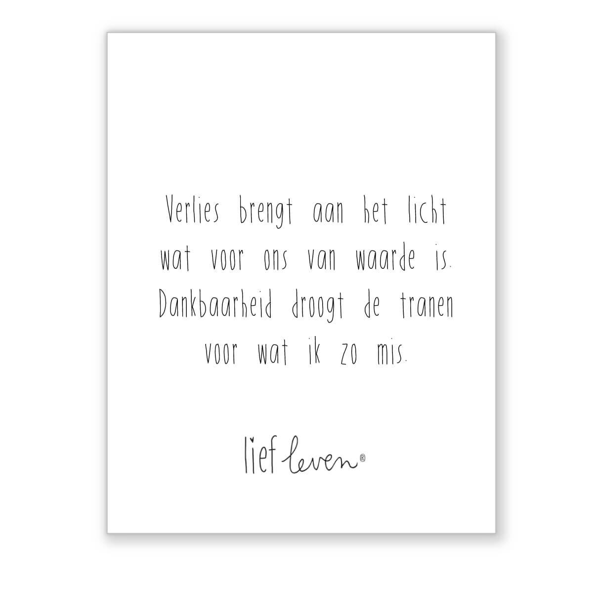Mini poster • Verlies brengt aan het licht