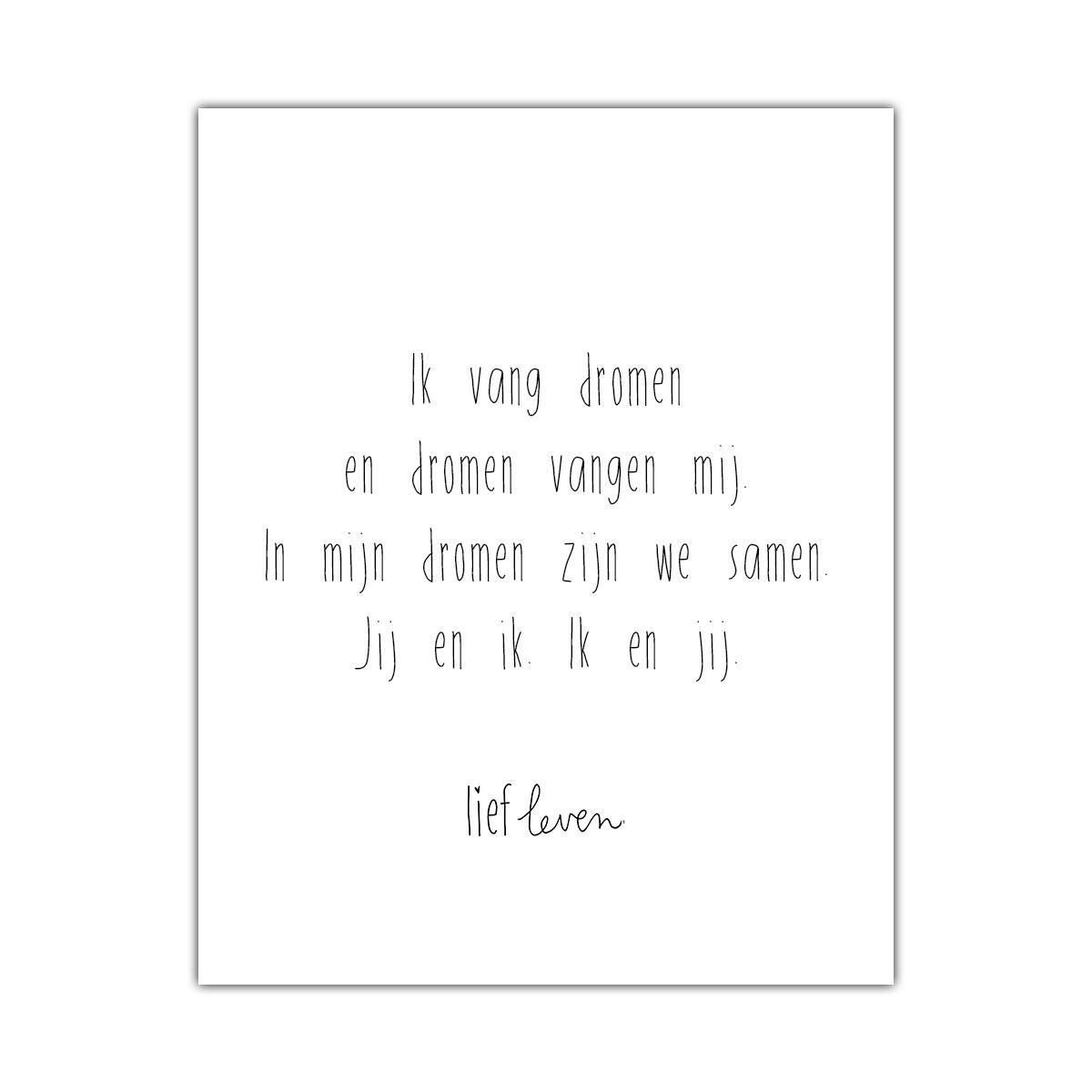 Mini Poster • Ik vang dromen