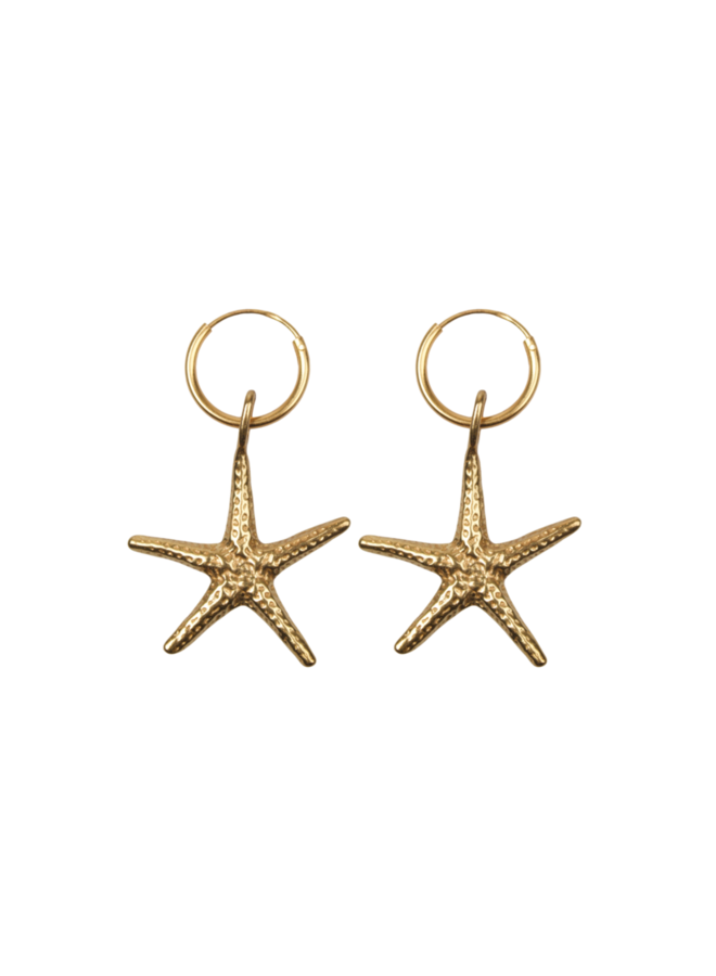 Big Starfish pair of earrings - A la Collection