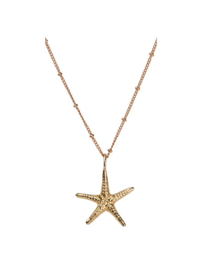 Big Starfish necklace - A la Collection