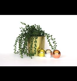 Oli & Eli Lippenbalsem metallic - 3 kleuren