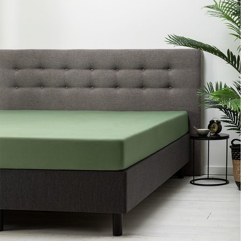 Dekbed Discounter 2-PACK: Hoeslaken Katoen - Groen 200 x 210/220 ccm
