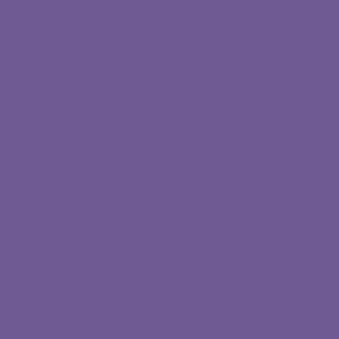 Siser Electric 30x50cm violet E0015