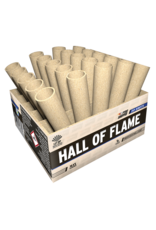 Lesli Vuurwerk Hall Of Flame 30 shots