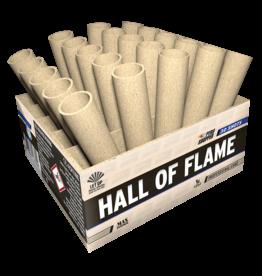Lesli Vuurwerk Hall Of Flame