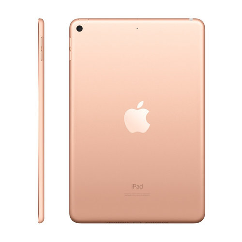 Apple Apple iPad Mini Wifi 64 GB Goud