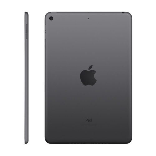 Apple Apple iPad Mini Wifi 256 GB Space Gray
