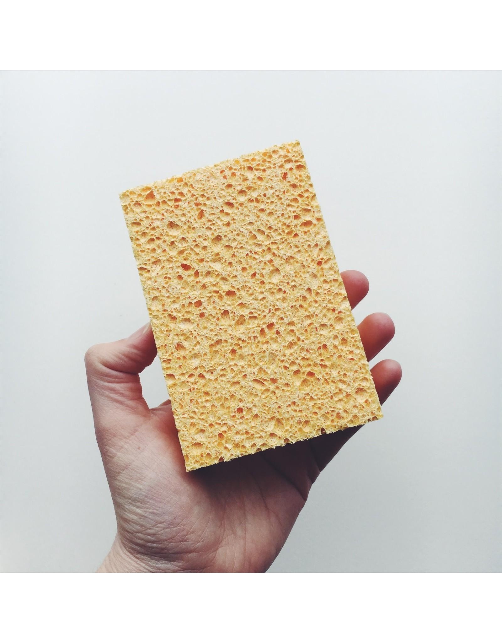 Biodegradable Cellulose Sponge