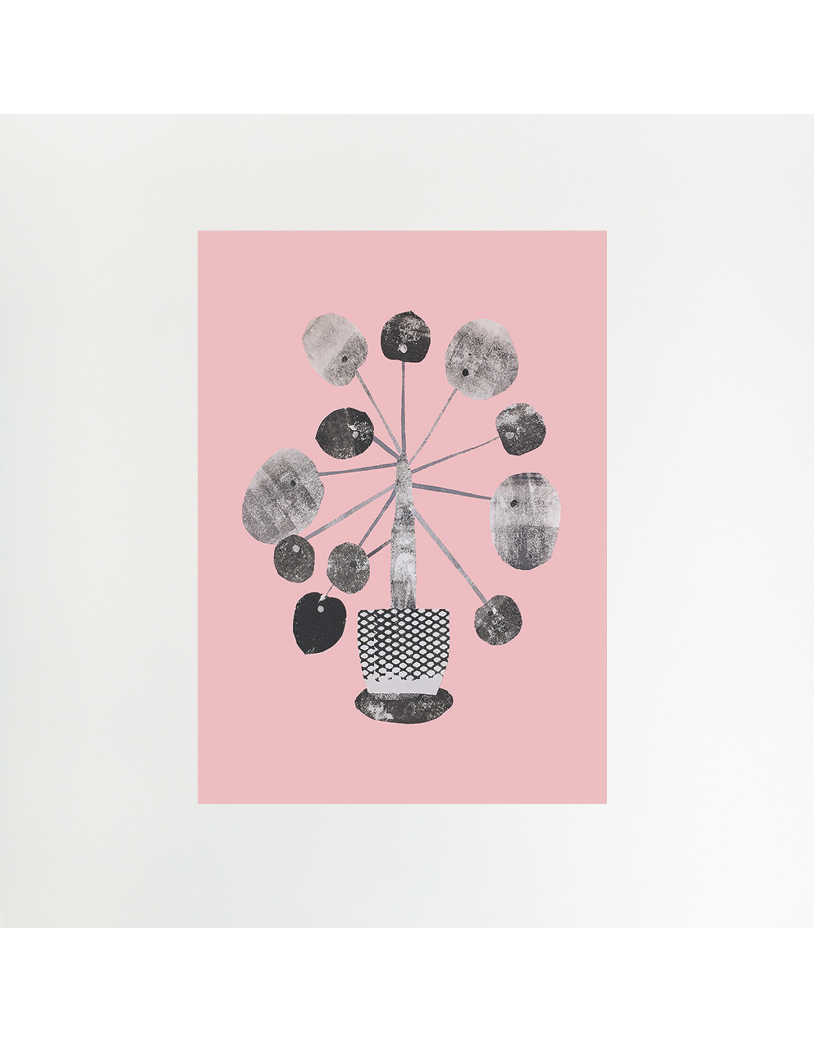 A4 Pilea on Pink Print