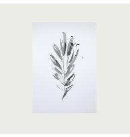 Ink Leaf Print I