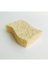 Biodegradable Curved Kitchen Sponge