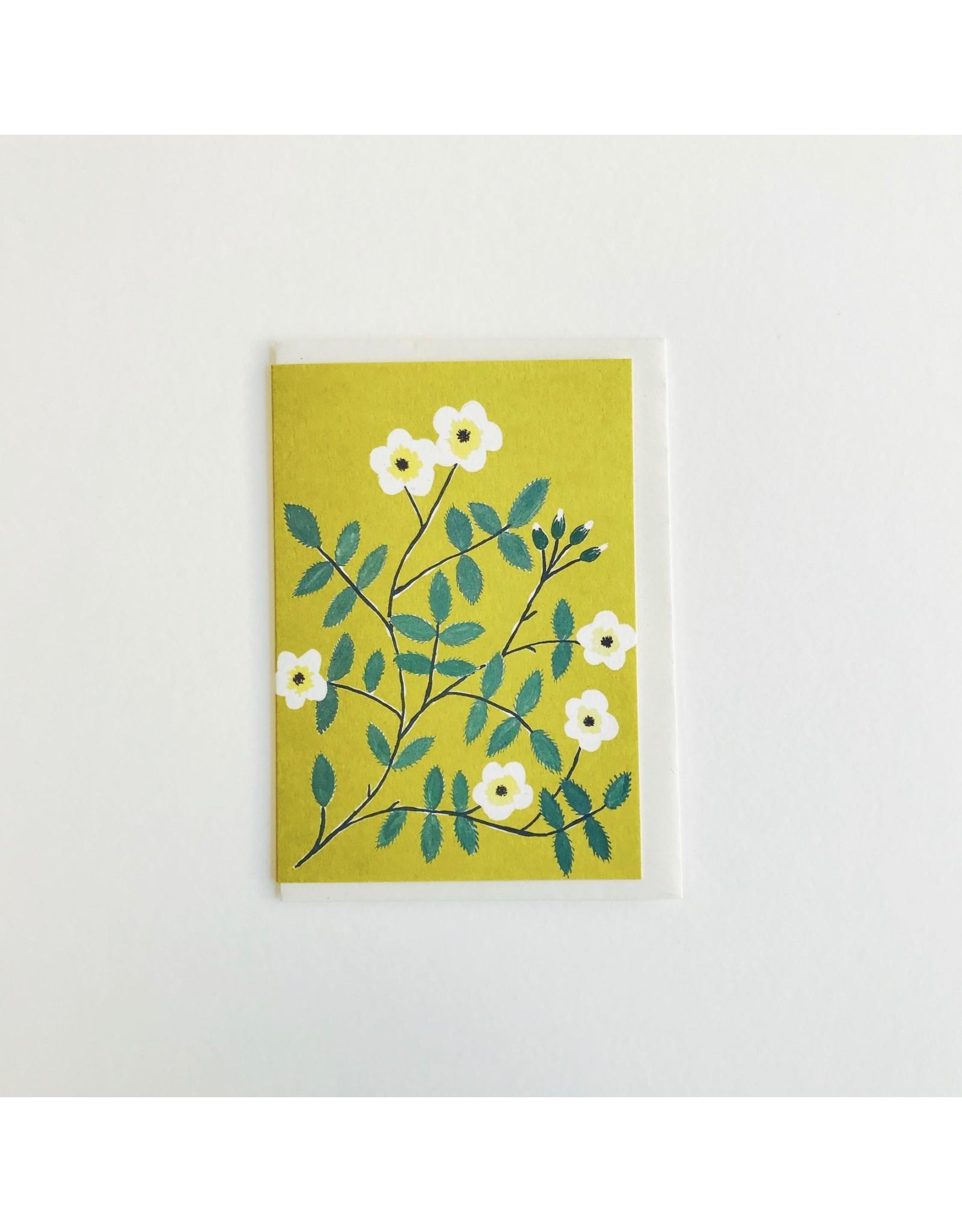 Wild Rose Greetings Card