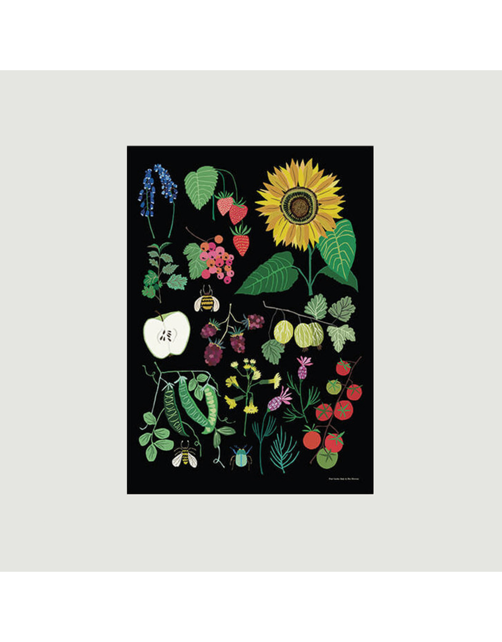 Fruit Garden A3 Print