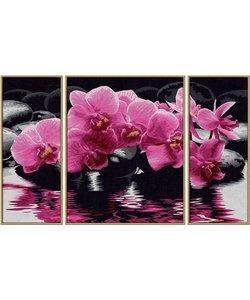 Schilderen op Nummer - Orchideeën