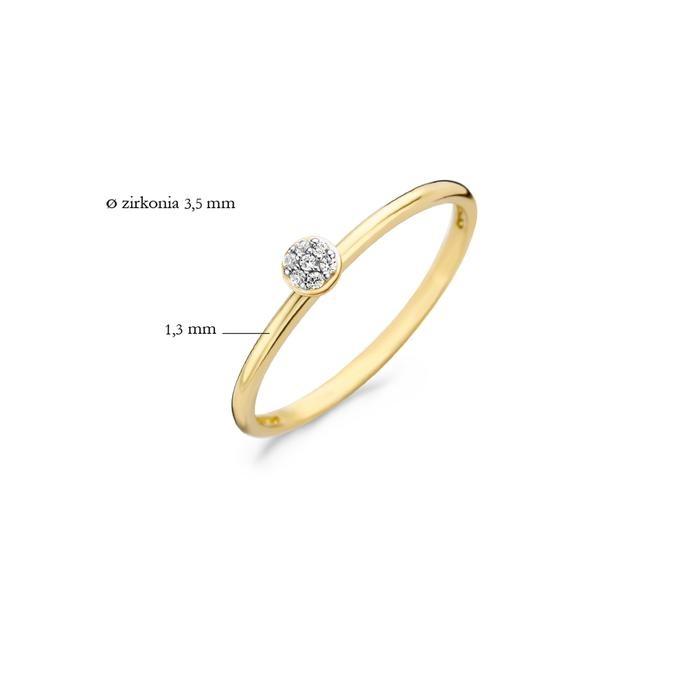 Blush Blush Ring 1199YZI - Geel Goud (14Krt.)