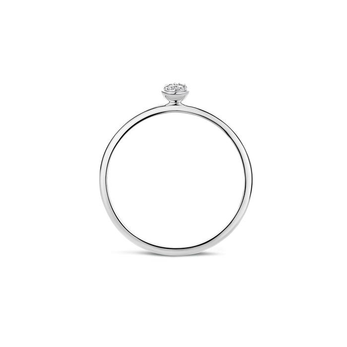 Blush Blush Ring 1199WZI - Wit Goud (14Krt.)