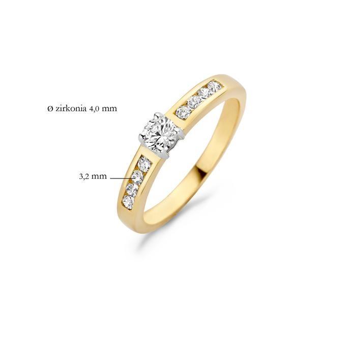 Blush Blush Ring 1125BZI - Geel en Wit Goud (14Krt.) met Zirconia