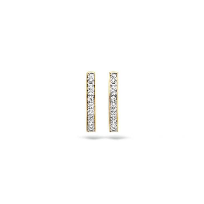 Blush Blush Oorbellen 7163BZI - Geel en Wit Goud (14Krt.) met Zirconia