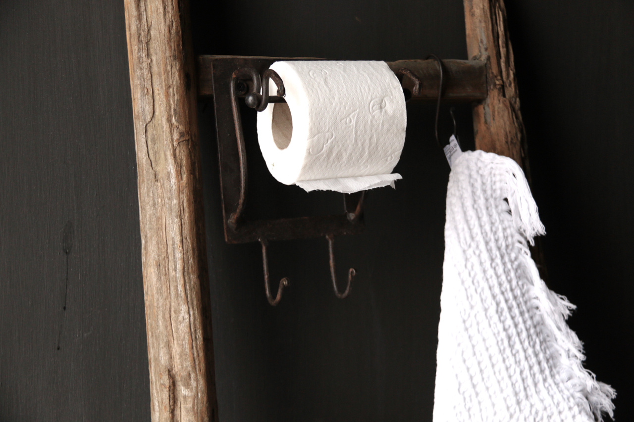 Toilet paper Toilet roll holder Iron-3