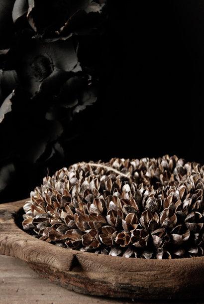 Bakuli (Beech nuts) wreath Champagne