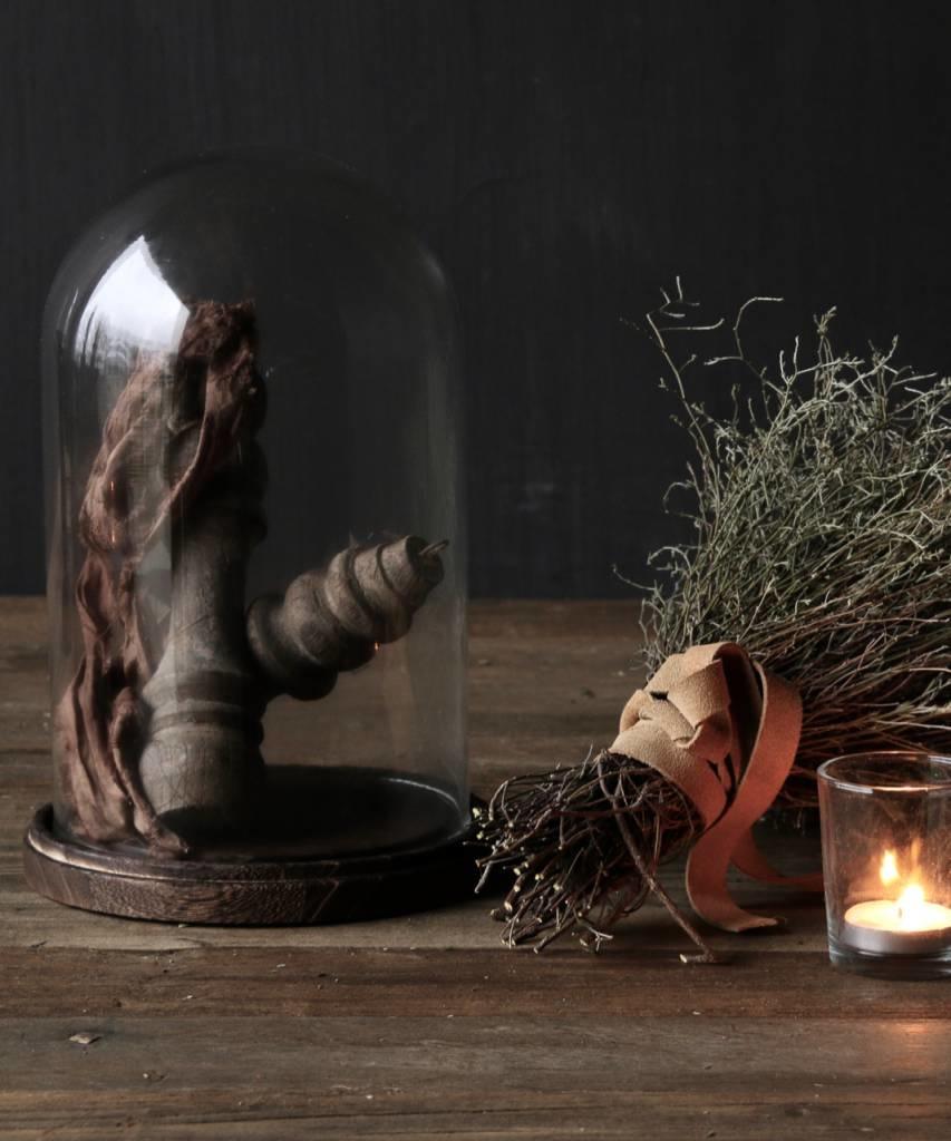 Cute little bell jar on brown wooden base-1