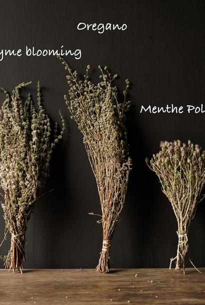 Swipe dried herbs