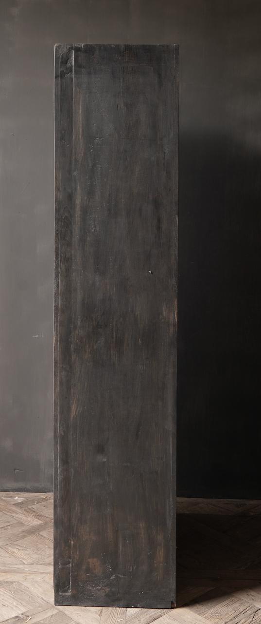 Oude Unieke Indische ( Wabi Sabi) kast twee deurs-3