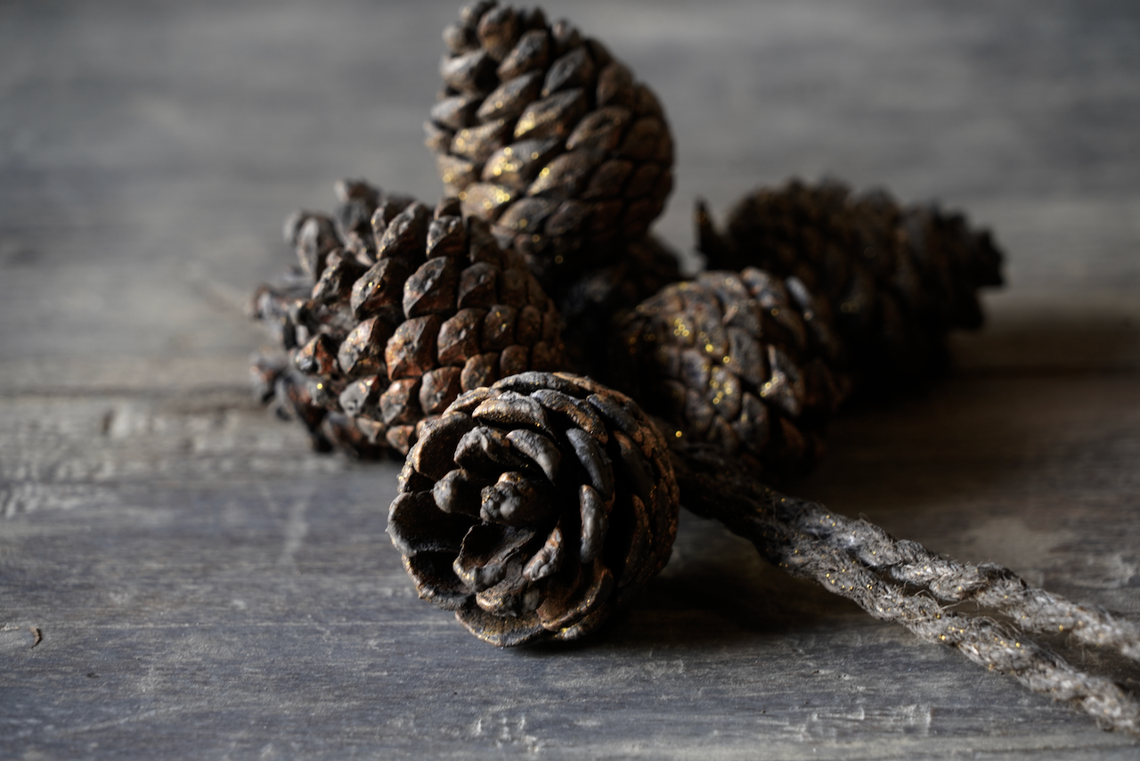 Bunch of pine cones with glitter Bunch of pine cones with glitter-2