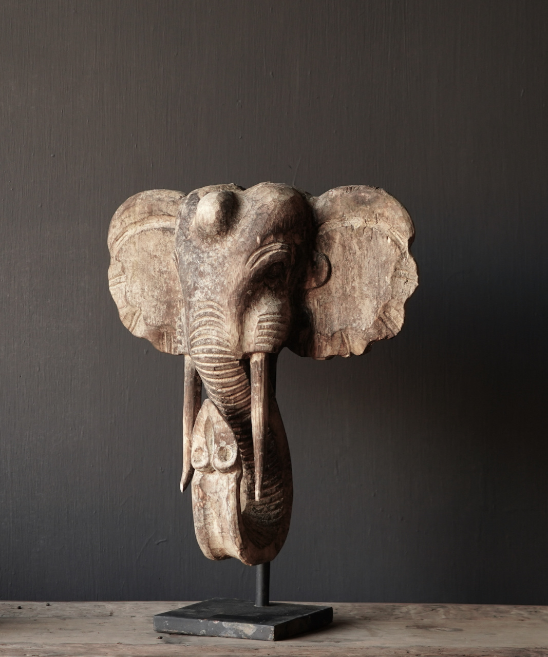 Wooden elephant head on iron stand-3