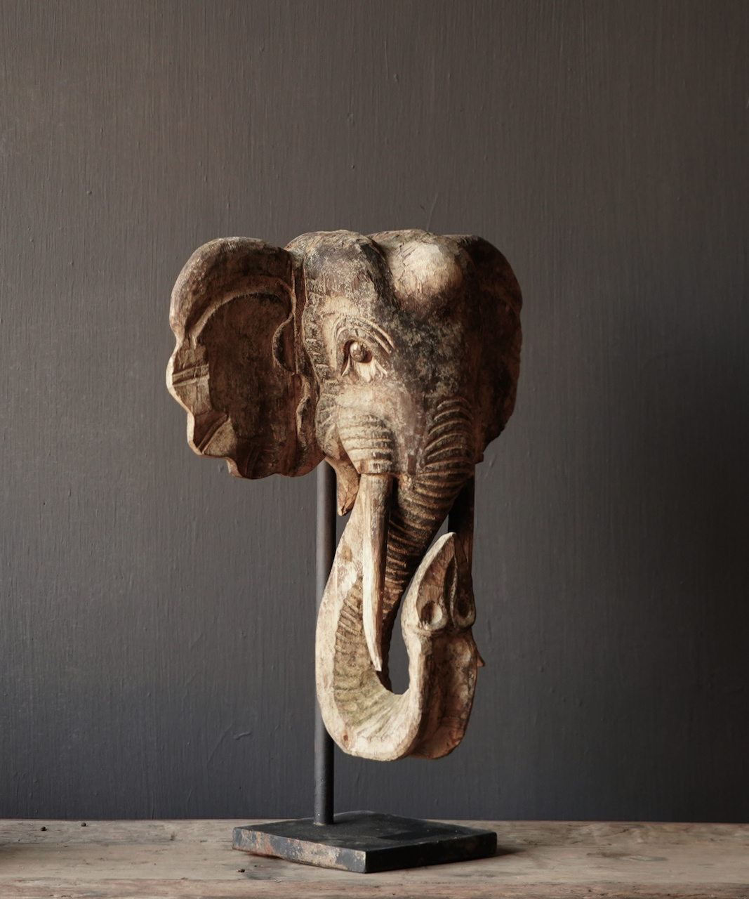 Wooden elephant head on iron stand-4
