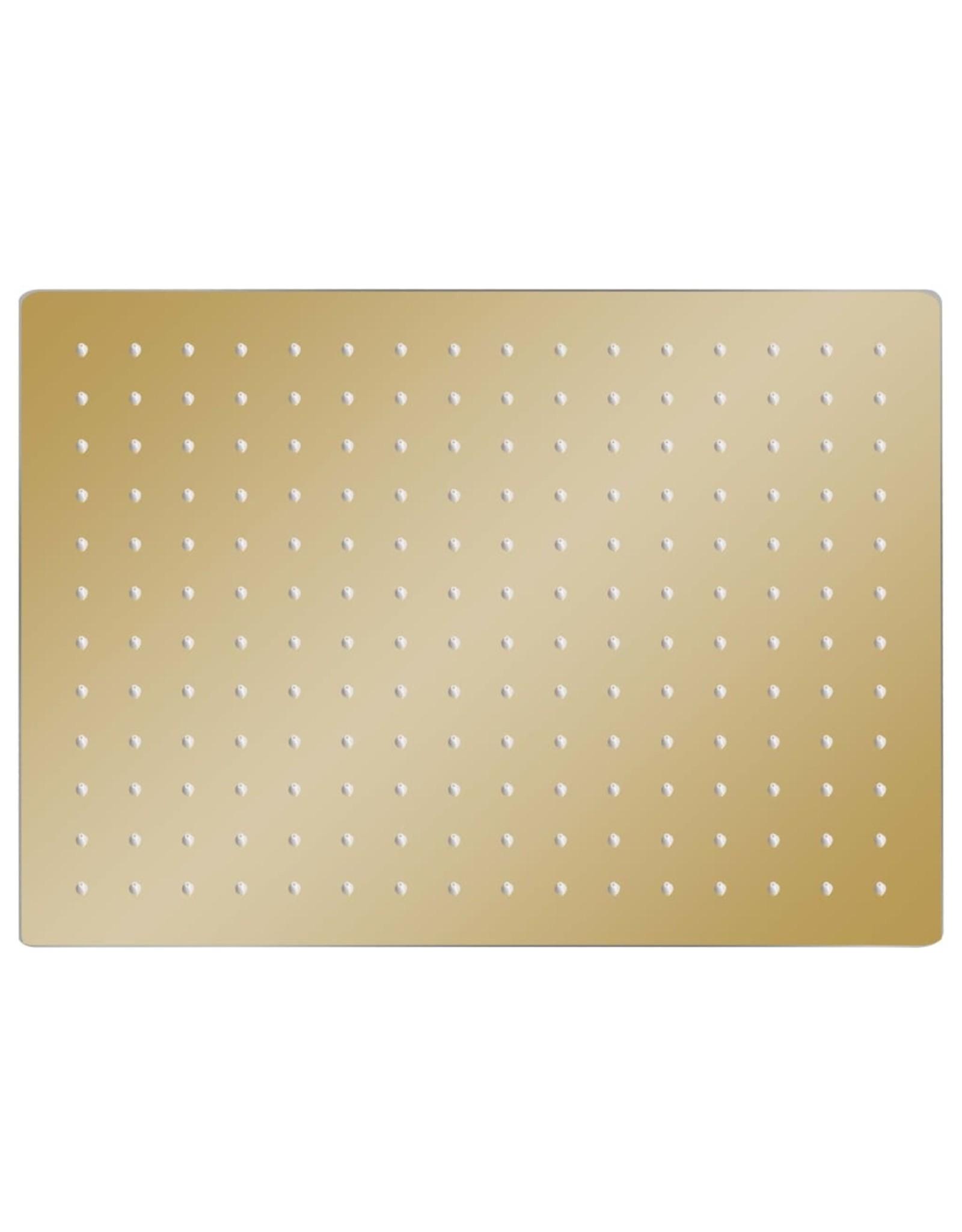 Regendouchekop rechthoekig 40x30 cm roestvrij staal goudkleurig