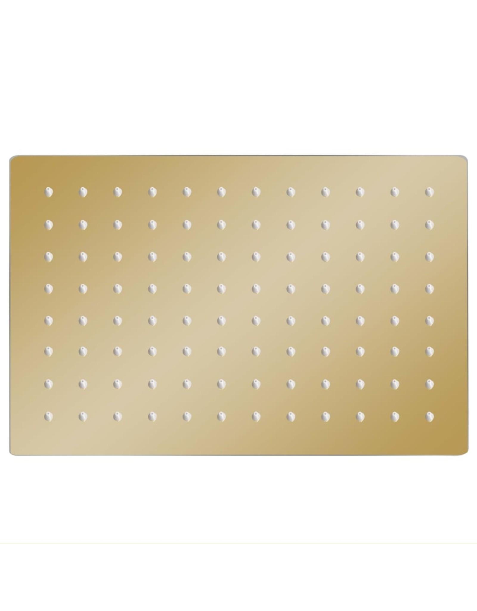 Regendouchekop rechthoekig 30x20 cm roestvrij staal goudkleurig