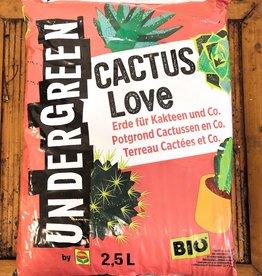Undergreen potgrond cactussen