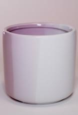 Marshmallow D10