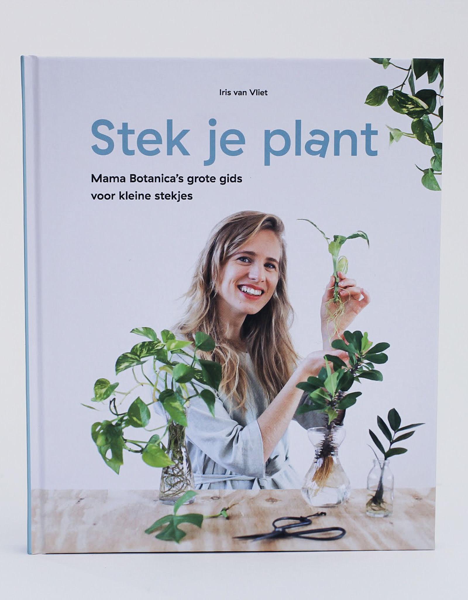 Mama Botanica Stek Je Plant