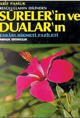 Resulullahın Dilinden Sureler'in ve Dualar'ın Esrarı, Hikmeti, Fazileti