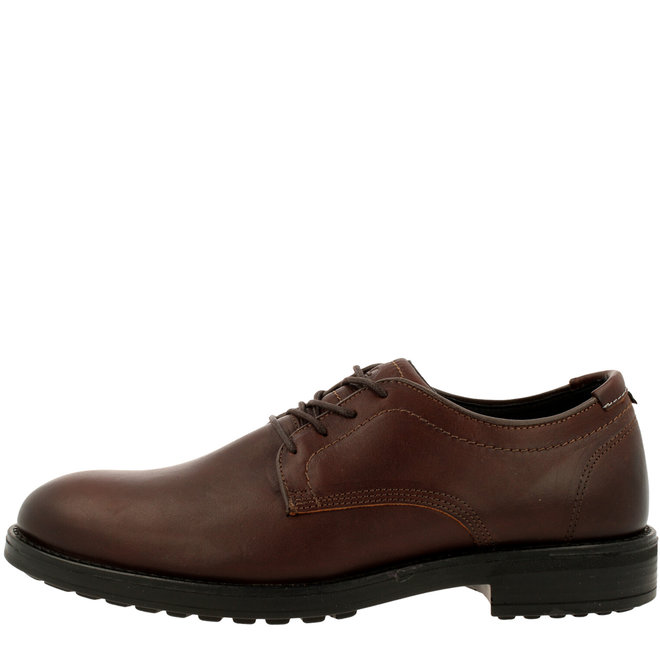 Cali Low Derby Lace-up Shoes Brown 694K20792ADKBWSU